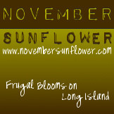 November Sunflower