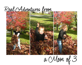Real Adventures From A Mom Of 3